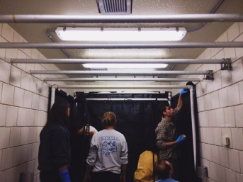 Some of our new students getting the colonization room for our Oyster Mushrooms set up and ready to grow some mycelium!